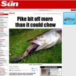 The Sun - Pike bit off more than it could chew